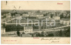 1905 TREVISO Panorama della città - Cartolina postale FP VG
