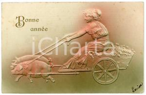 1905 BONNE ANNEE Lucky pigs towing a woman on a cart *Embossed Postcard