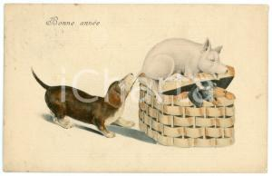 1910 BONNE ANNÉE Dog biting the tail of a lucky pig - Postcard FP VG