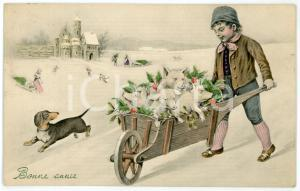 1909 BONNE ANNÉE Child with pigs in wheelbarrow - Illustrated postcard FP VG