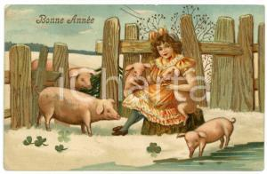 1900ca BONNE ANNÉE Little girl petting pigs - Embossed Postcard FP VG