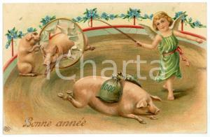 1909 BONNE ANNÉE - CIRCUS Cupid and lucky pigs - Embossed Postcard FP VG