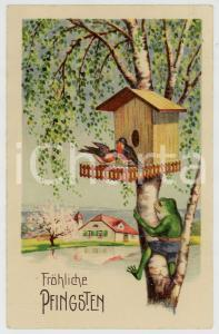 1931 FRÖHLICHE PFINGSTEN Frog on tree with two robins - Vintage postcard