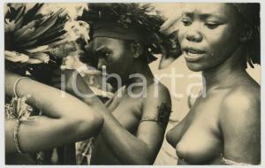 1950 ca CONGO BELGE Jeunes filles indigènes avec des coiffes en plumes - RPPC