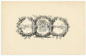 1920 ca ITALIA - PRO BELGIO L'union fait la force - Cartolina ILLUSTRATA FP NV