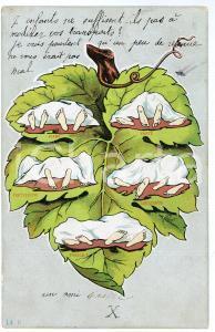 1904 HUMOUR EROTISME Piano, forte, fortissimo, crescendo, finale - Cartolina