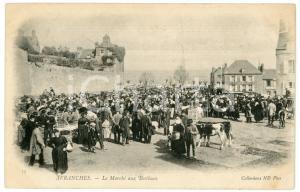 1900 ca AVRANCHES - COUTUMES - Marché aux Bestiaux - Carte postale