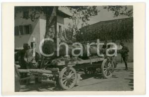 1915 ca WW1 - ALTOPIANO DI ASIAGO Cannone da 149 prolungato - Foto 13x8 cm