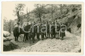1941 WW2 - ALBANIA Soldati a cavallo nell'Alta Valle Skumini - Foto 13x8 cm