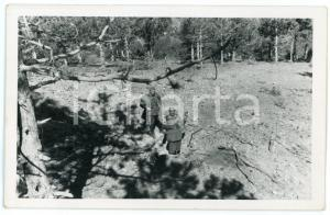 1941 WW2 - ALBANIA Soldati nella buca dopo l'esplosione di una bomba - Foto 13x8