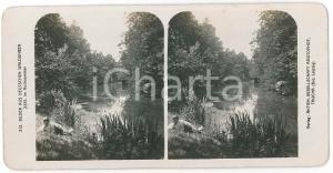 1890 ca GERMANY Bilder aus Deutschen Waldungen - Im Hochsommer *Stereoview 212