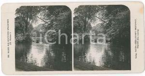 1890 ca GERMANY Bilder auds Deutschen Waldungen - Waldsee *Stereoview 202