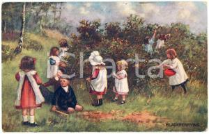 1912 CHILDREN Blackberrying - When all is young ILLUSTRATED Postcard n.9855