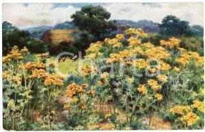 1920 ca FRAGRANT MEADOWS Rooster and hens in a flowery field  Postcard n. 9613