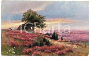1920 ca Artist Paul GUNTHER Landscape - Postcard serie HEIDELANDSCHAFTEN 438