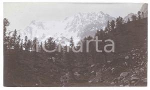 1905 ca MACUGNAGA (VCO) Il MONTE ROSA dal Belvedere - Foto VINTAGE 14x8 cm